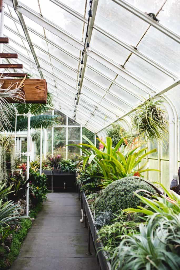 Volunteer Park Conservatory Seattle | Rainy day Seattle