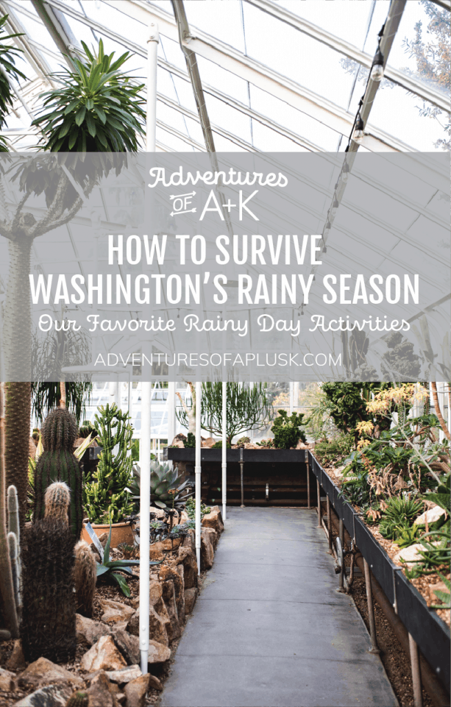 Rainy day activities in Washington | Thing to do Washington | Things to do Seattle | Seattle Rain | Rainy season Washington | Indoor activities Seattle | Indoor activities Washington