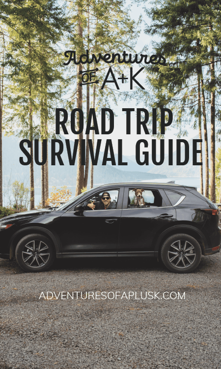 Road Trip Survival Guide | Road Trip Tips | Road Trip Snacks | Road Trip Music | Road Trip Podcasts | Road Trip with Dog | Traveling with Dog
