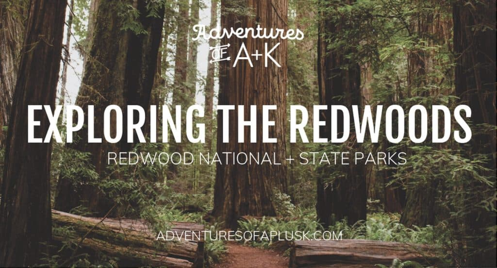 Exploring Redwood National and State Parks