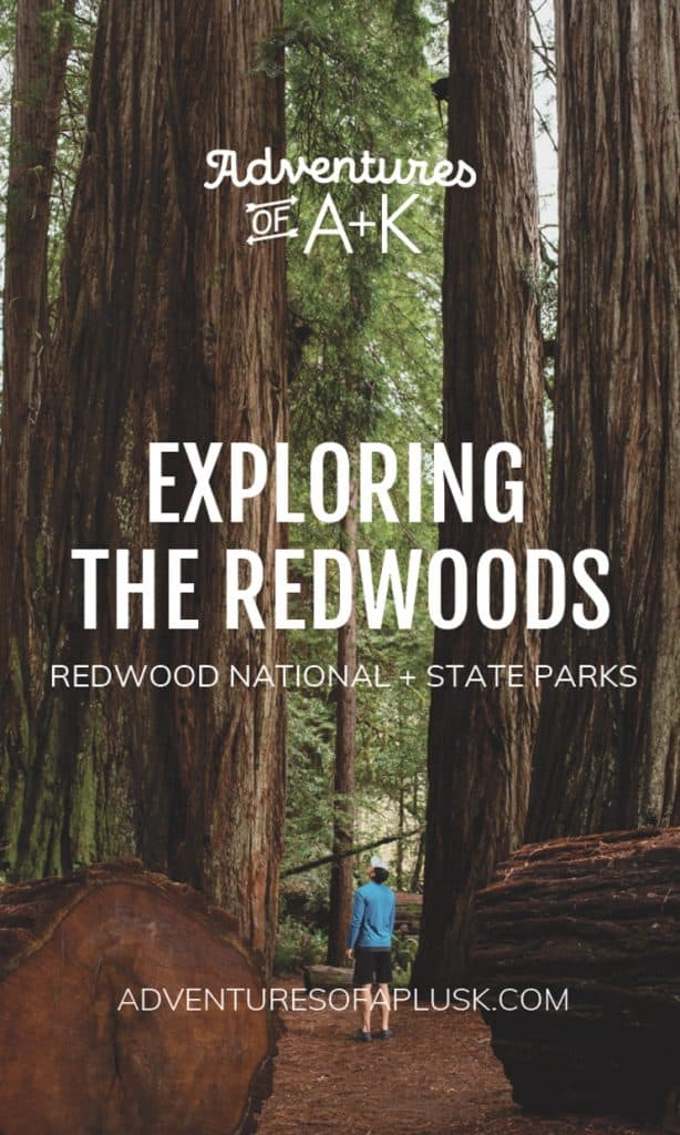 Redwood National and State Parks | Redwoods California | Things to do Redwoods | Best Hikes Redwoods | Redwood Hikes| Jedediah Smith Redwoods State Park | Del Norte Coast Redwoods State Park | Prairie Creek Redwoods State Park | Redwood National Park | Where to stay Redwoods