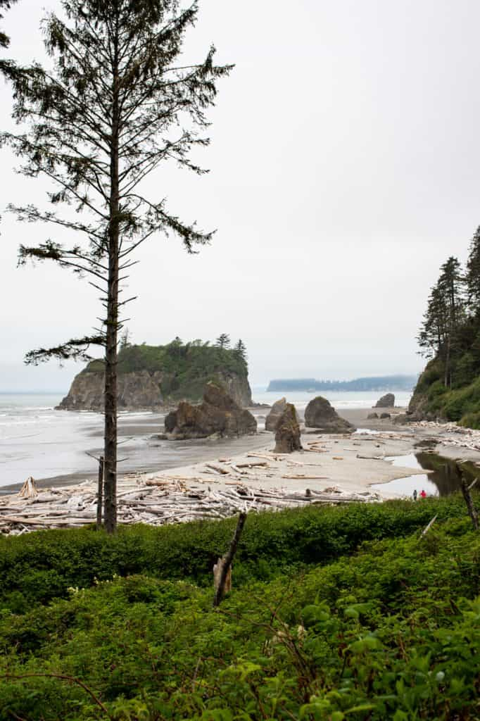 Olympic Peninsula Ruby Beach | Free and Cheap things to do in Seattle