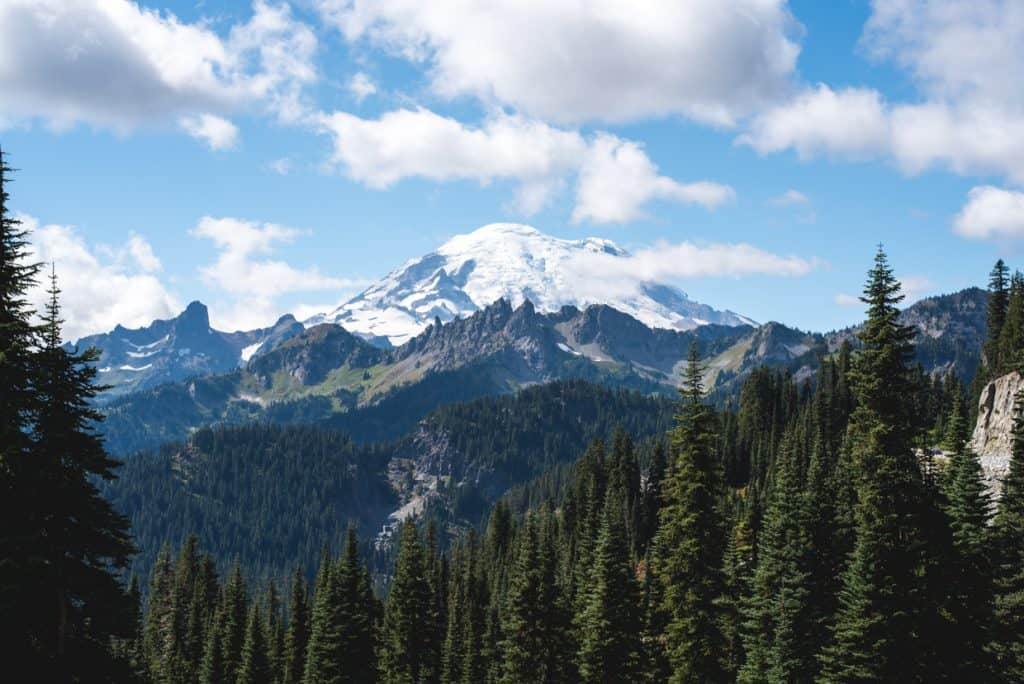 Mount Rainier National Park | Free and Cheap things to do in Seattle