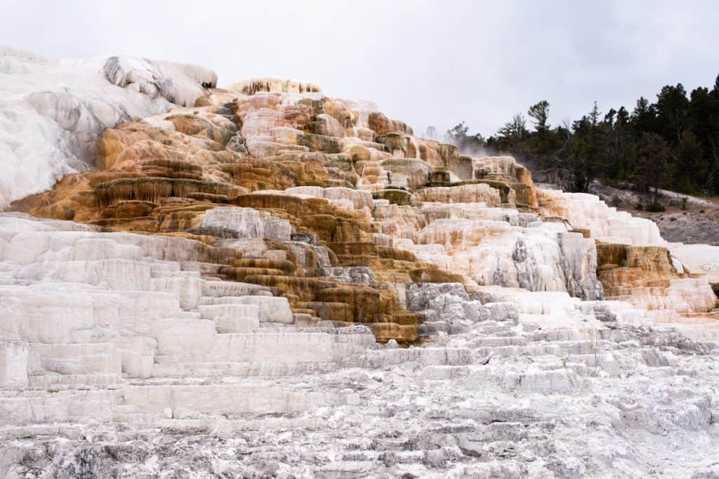 Mammoth Hot Springs | 2 Days at Yellowstone