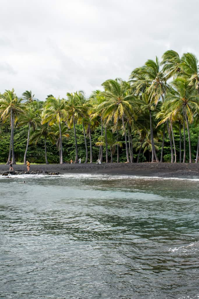 Punalu'u Black Sand Beach | Best Beaches on the Big Island