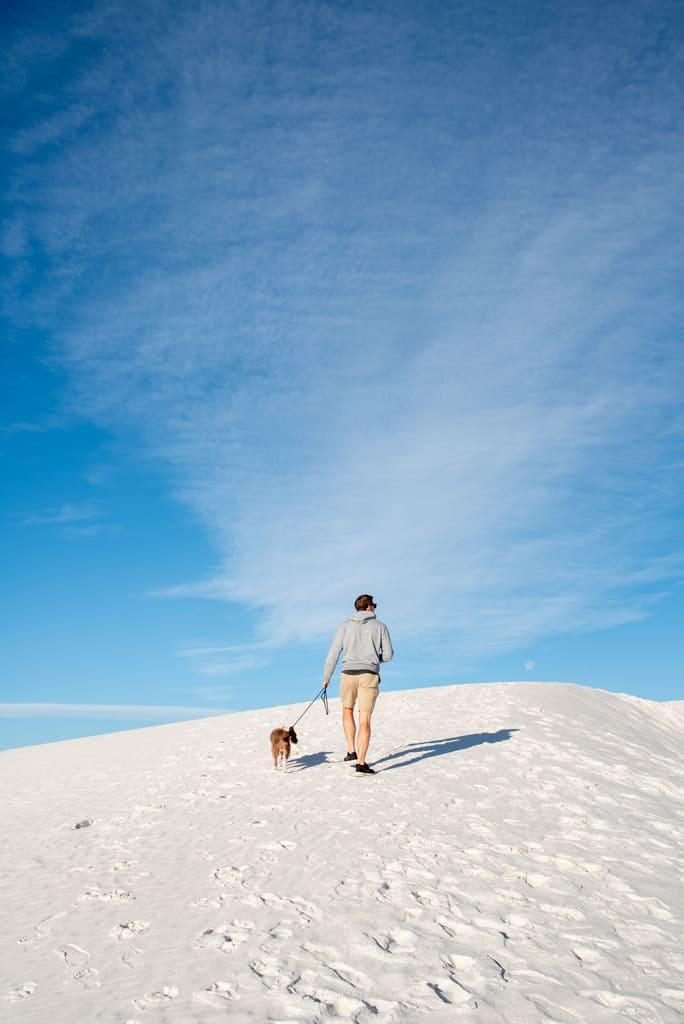 Pet Friendly White Sands