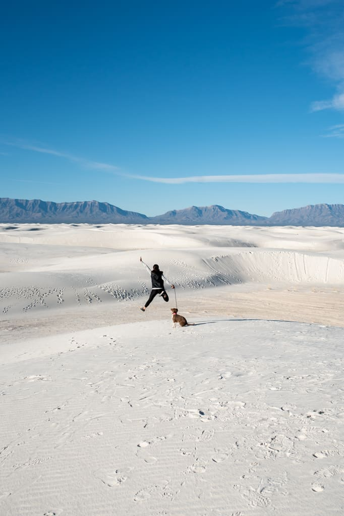 Pet Friendly Things to do at White Sands National Park