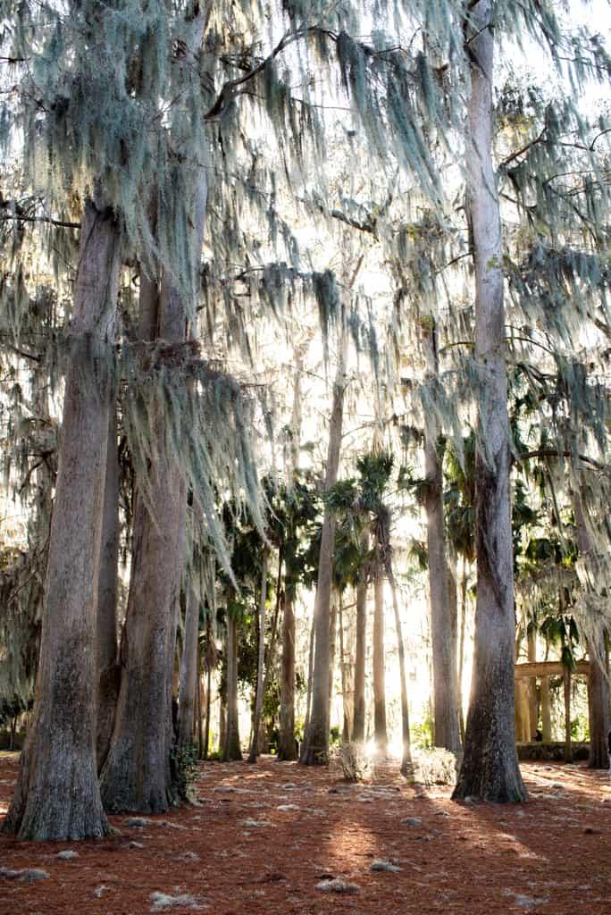Kraft Azalea Gardens, Things to do in Orlando besides theme parks
