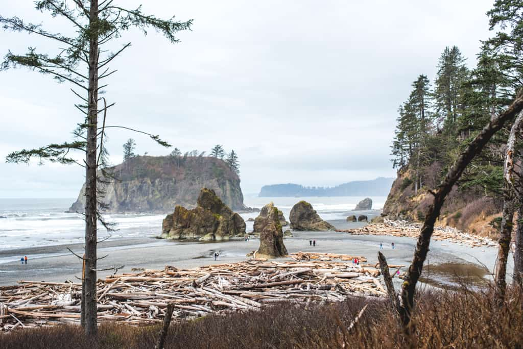 Olympic Peninsula Road Trip Itinerary