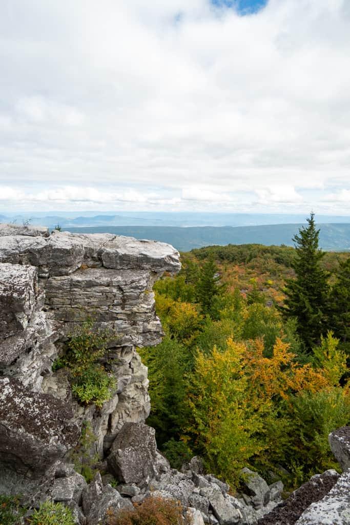Dolly Sods | Bear Rocks Preserve