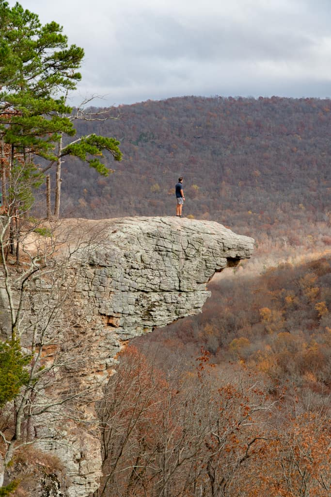 Whitaker Point Trail to Hawksbill Crag
