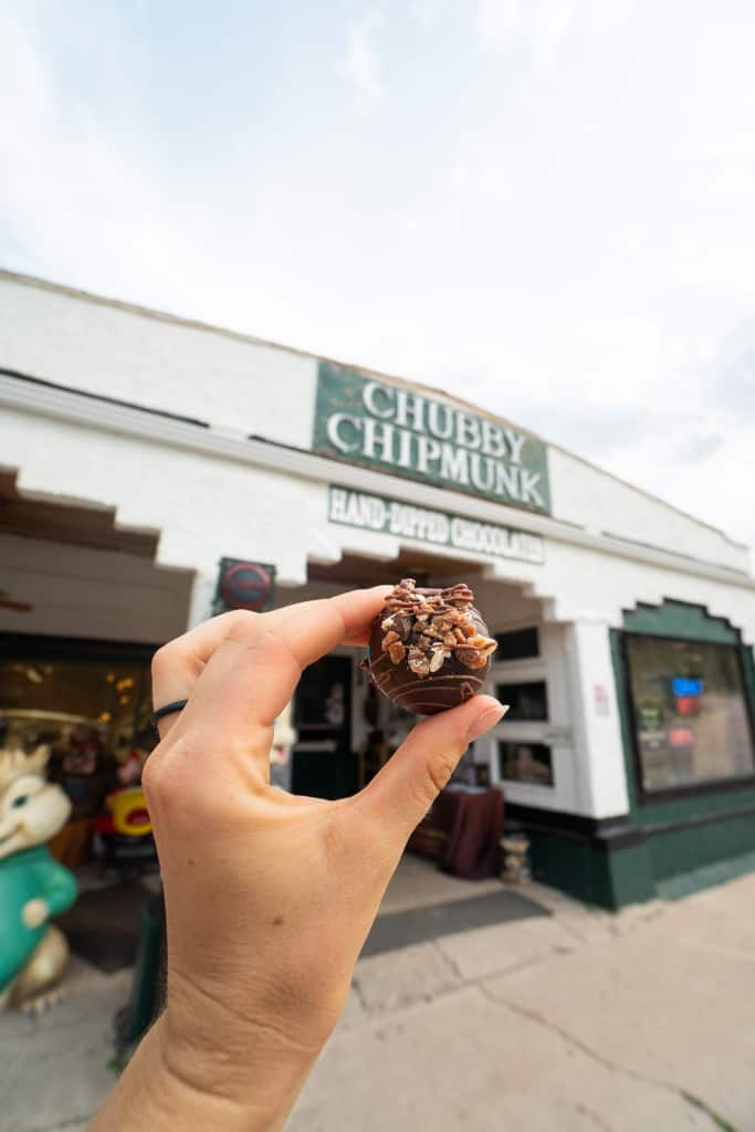 Chubby Chipmunk Deadwood South Dakota