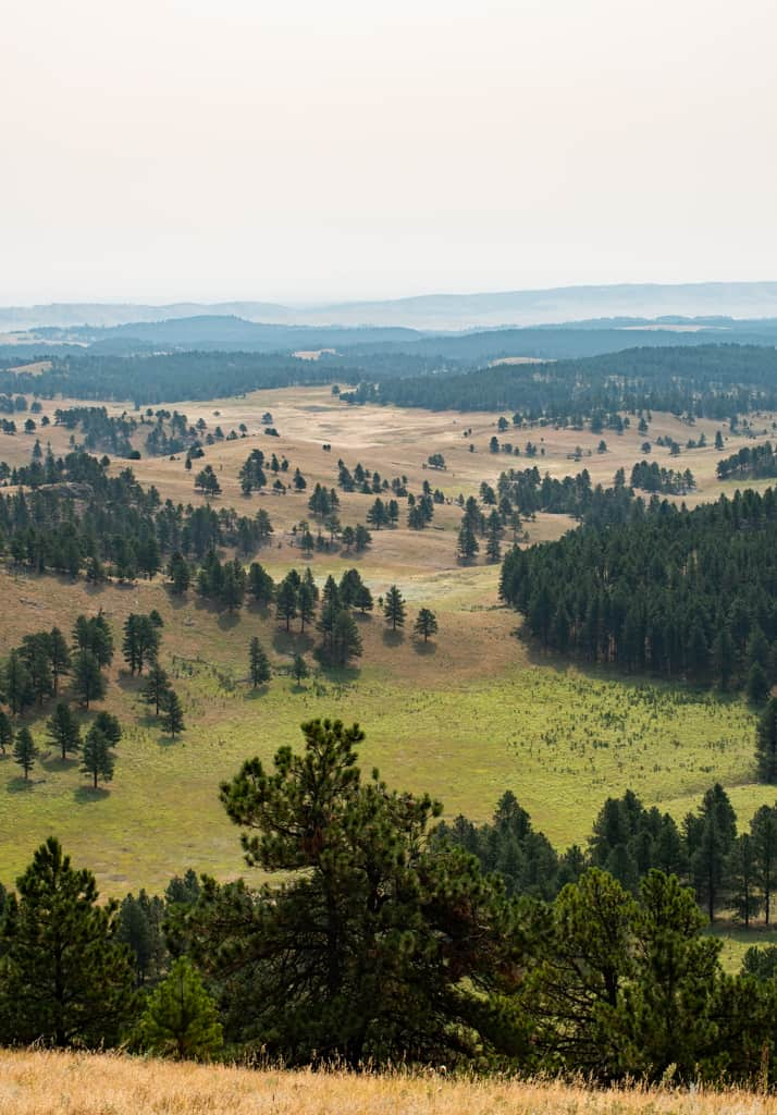 The Best Things to do in the Black Hills