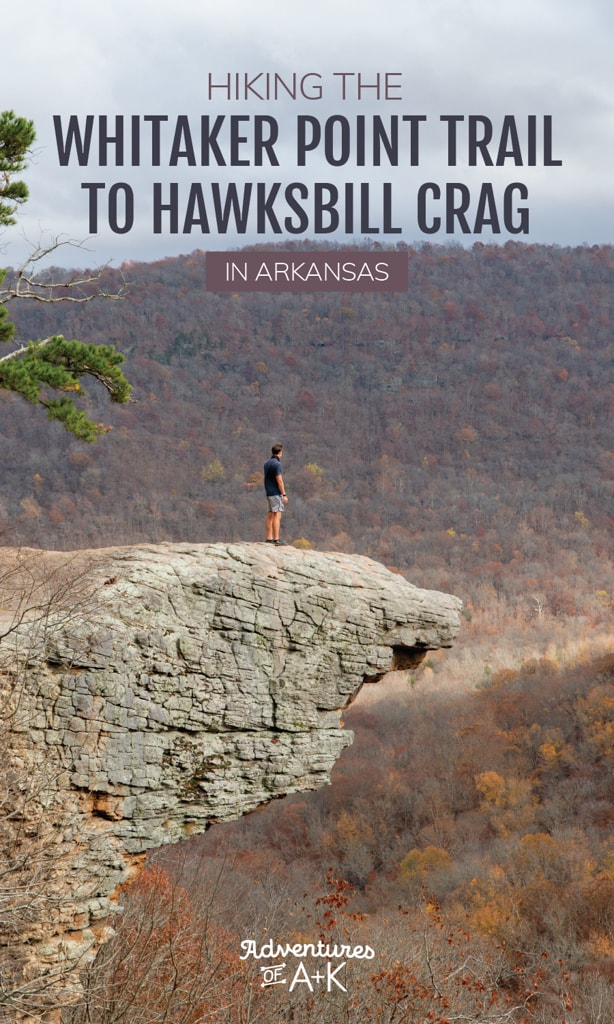 Hiking the Whitaker Point Trail to Hawksbill Crag in Arkansas | Whitaker Point Trail | Hawksbill Crag | Whitaker Point Arkansas | Whitaker Point Trailhead | Hiking in Arkansas | Ozark Mountain Hikes | Best hikes in the Ozark Mountains | Arkansas hikes | Things to do in Arkansas | Things to do in the Ozark Mountains