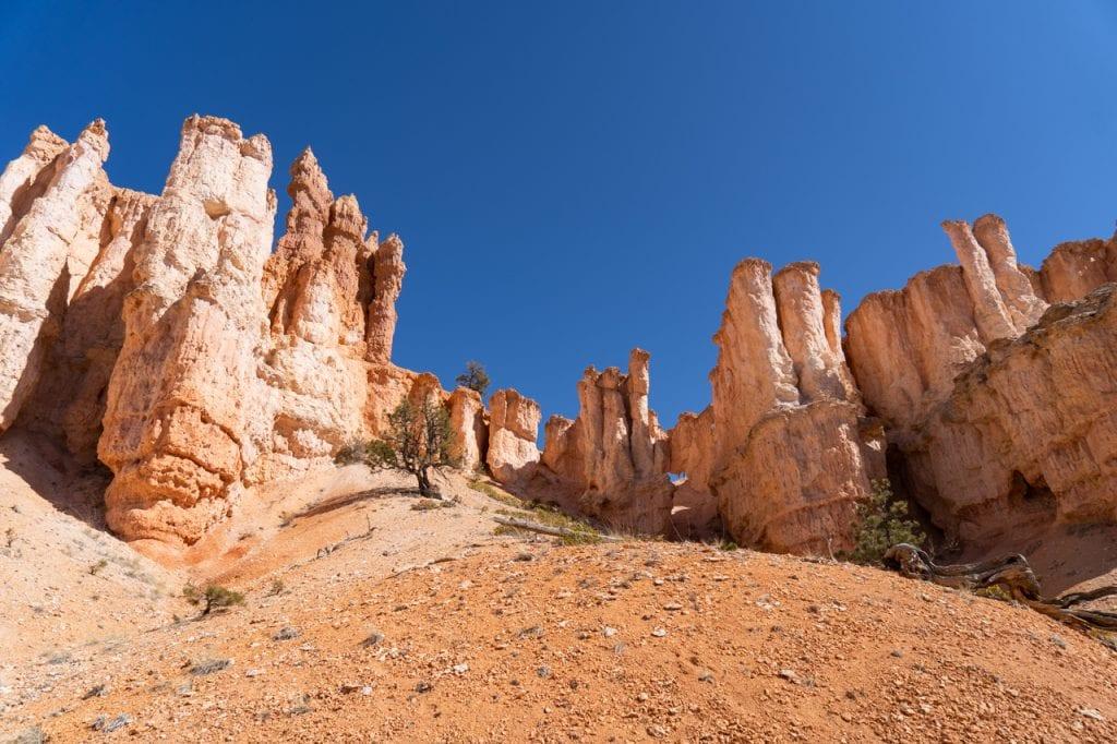 Bryce Canyon Hoodoos along the Fairyland Loop Trail