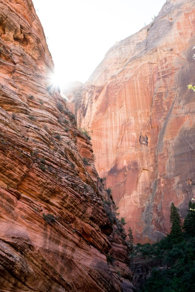 Observation Point from Zion Canyon Weeping Rock