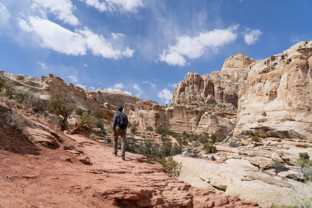 Things to do at Capitol Reef National Park