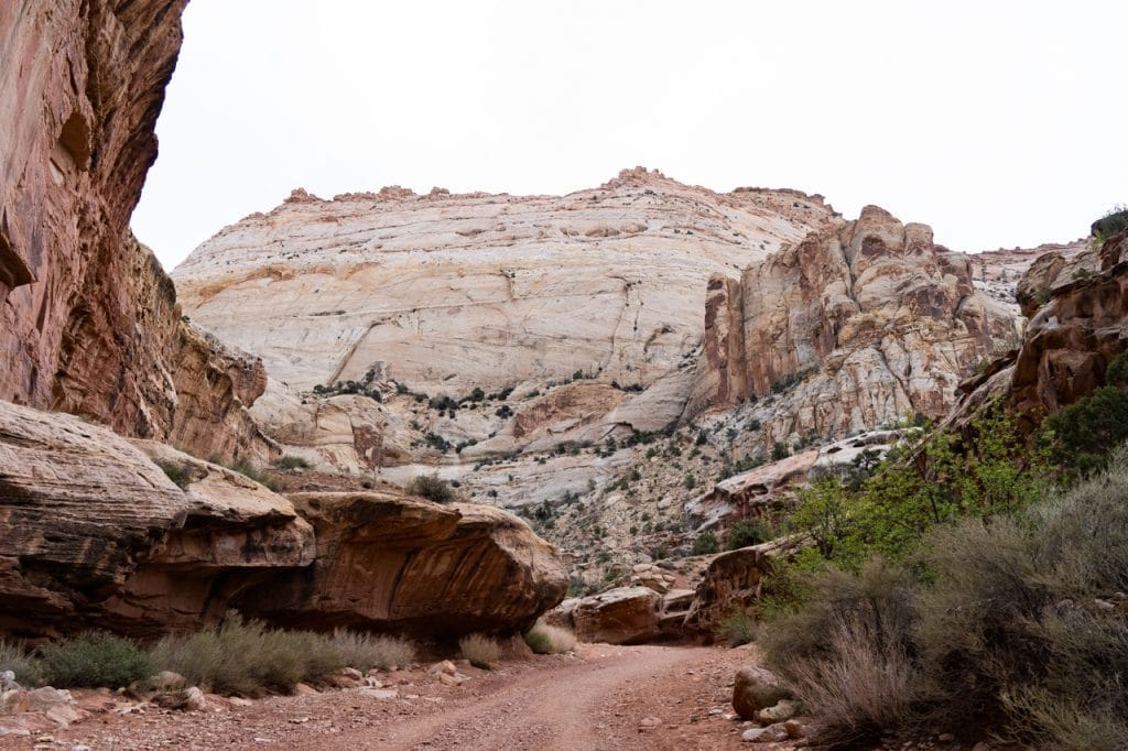 Cassidy Arch Capitol Reef National Park