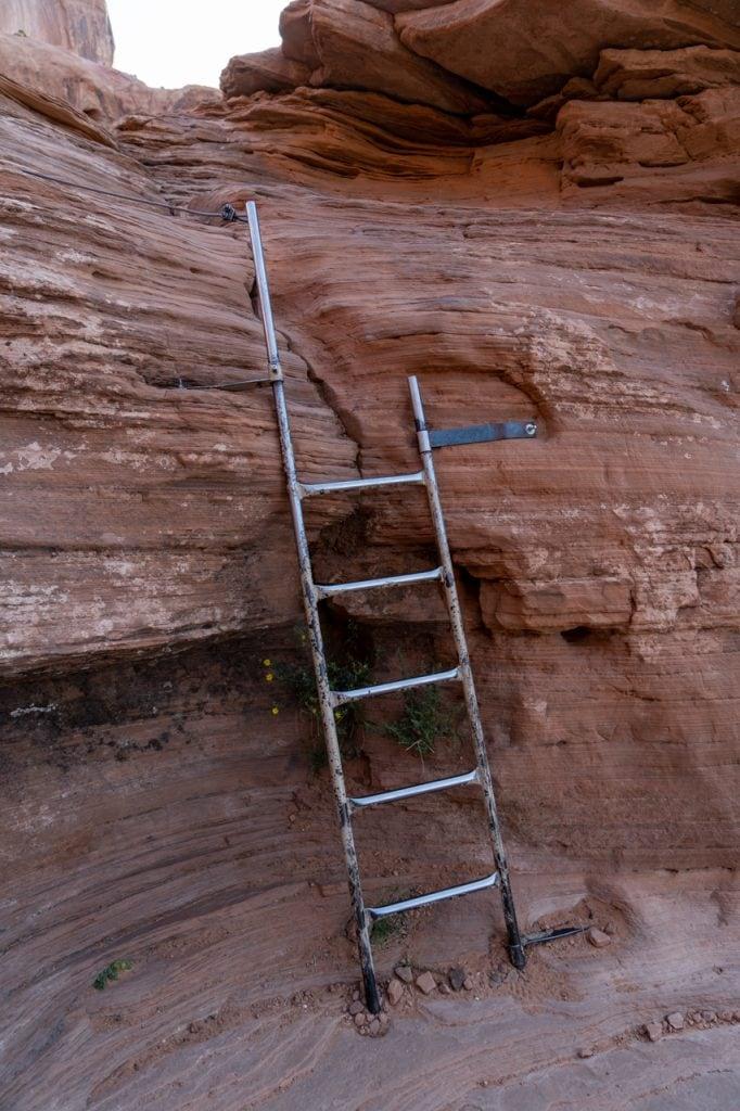 Corona Arch Ladder