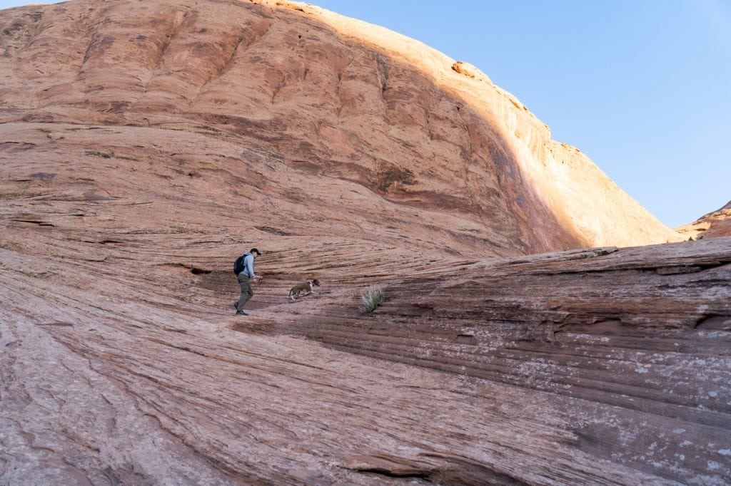 Dog friendly hikes in Moab